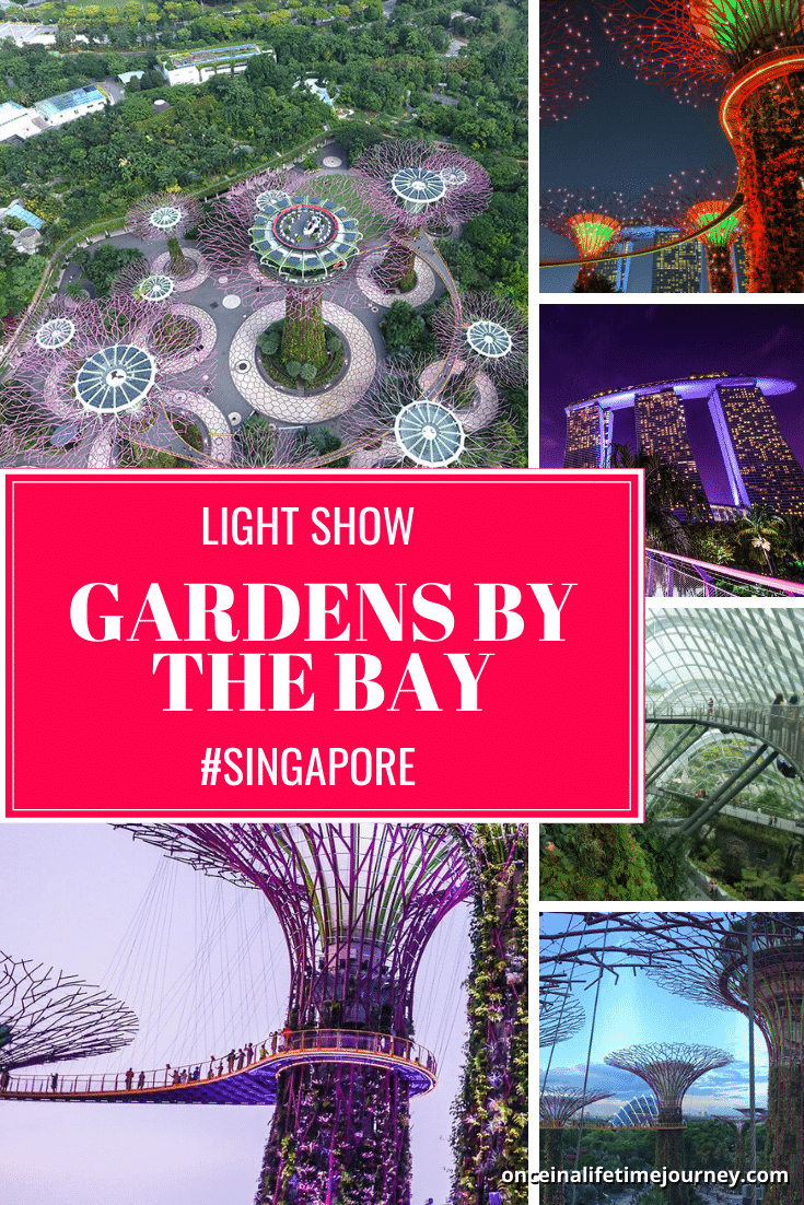 Gardens by the Bay Light Show Pin 02