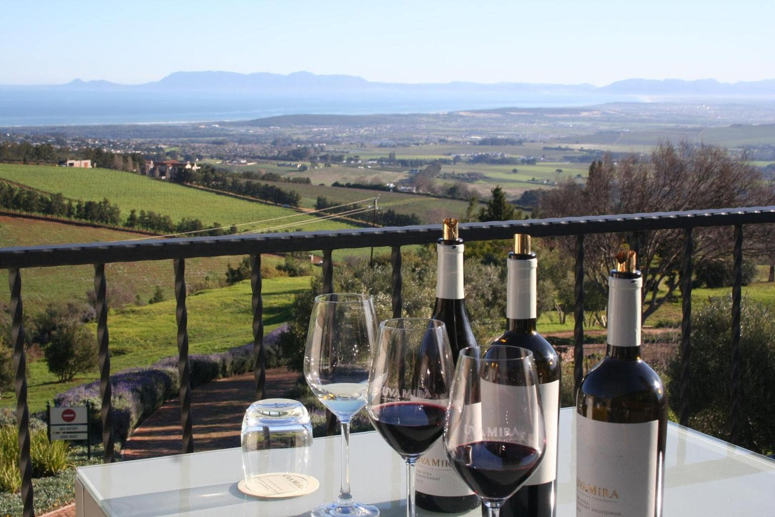 Looking out at the view at Uva Mira in Stellenbosch