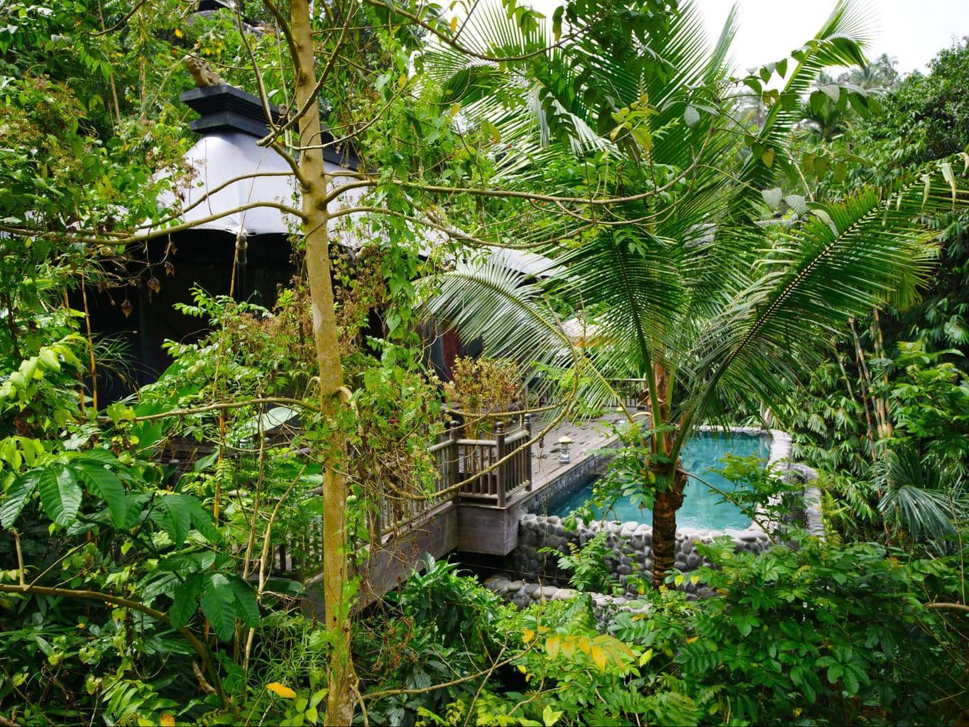 Pools at two of the Capella Ubud tents from a distance