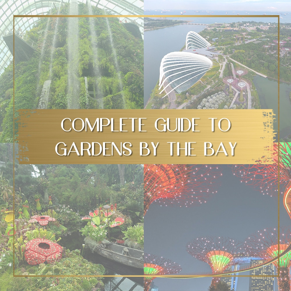Visit Gardens by the Bay feature