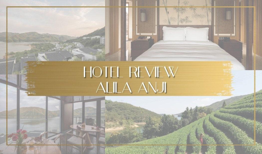 Review of Alilia Anji China main