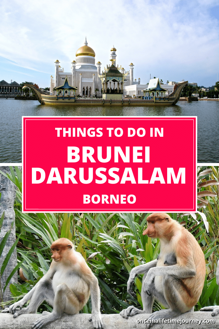 Things to do in Brunei Pin 01