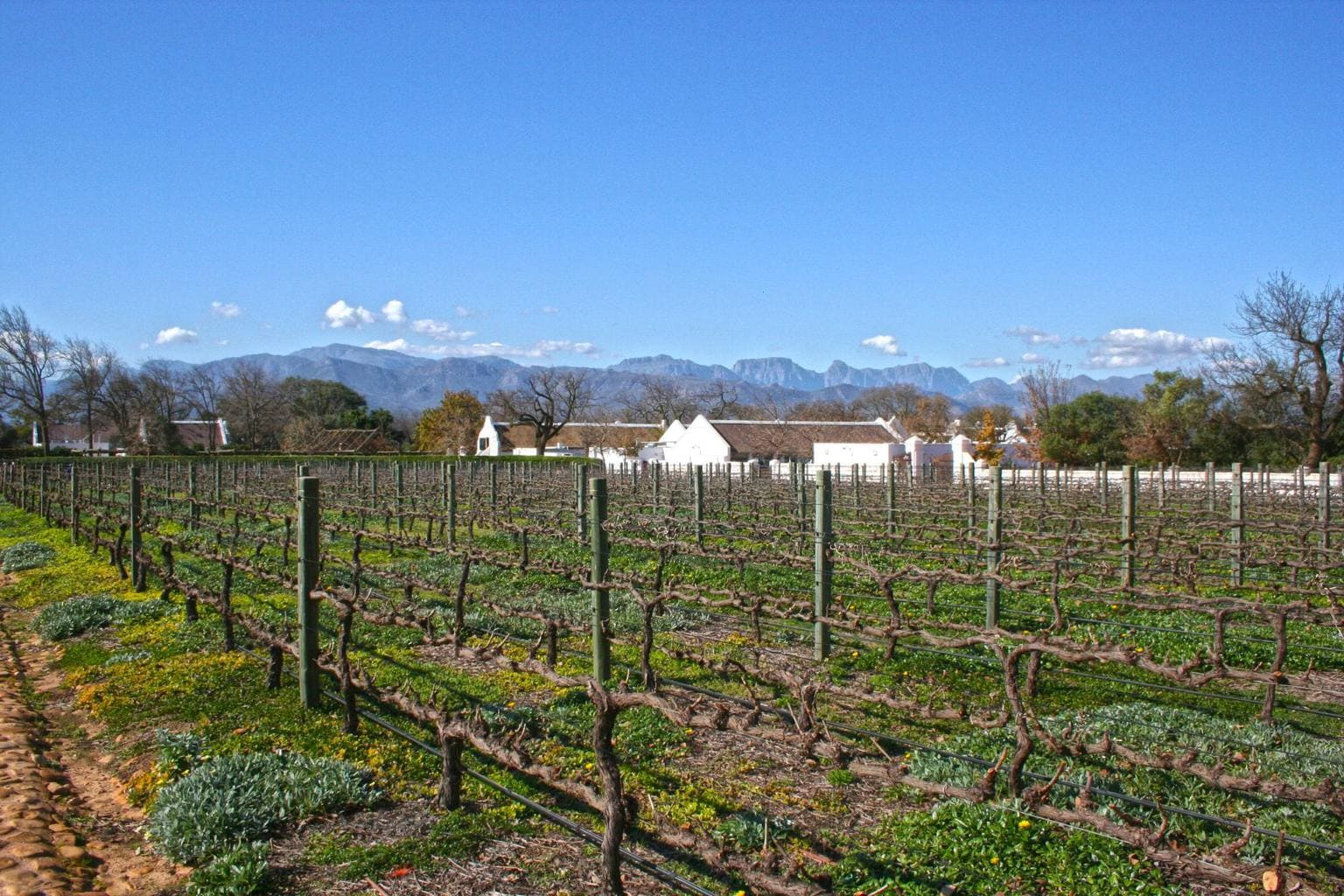Babylonstoren, winery in Simondium
