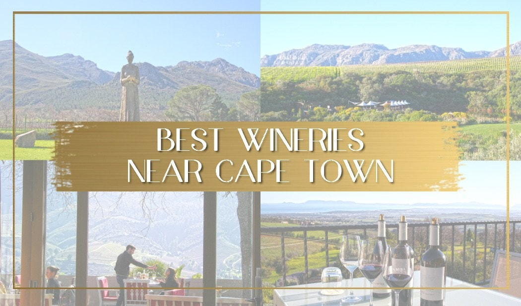 Best Wineries near Cape Town main
