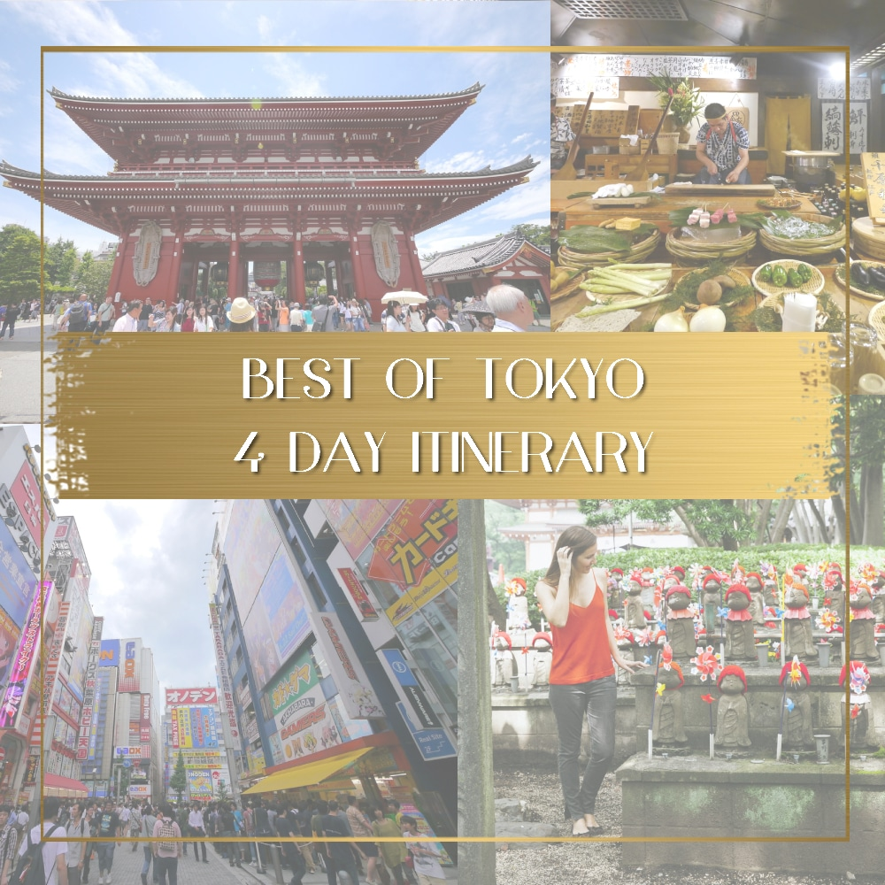 Best of Tokyo feature