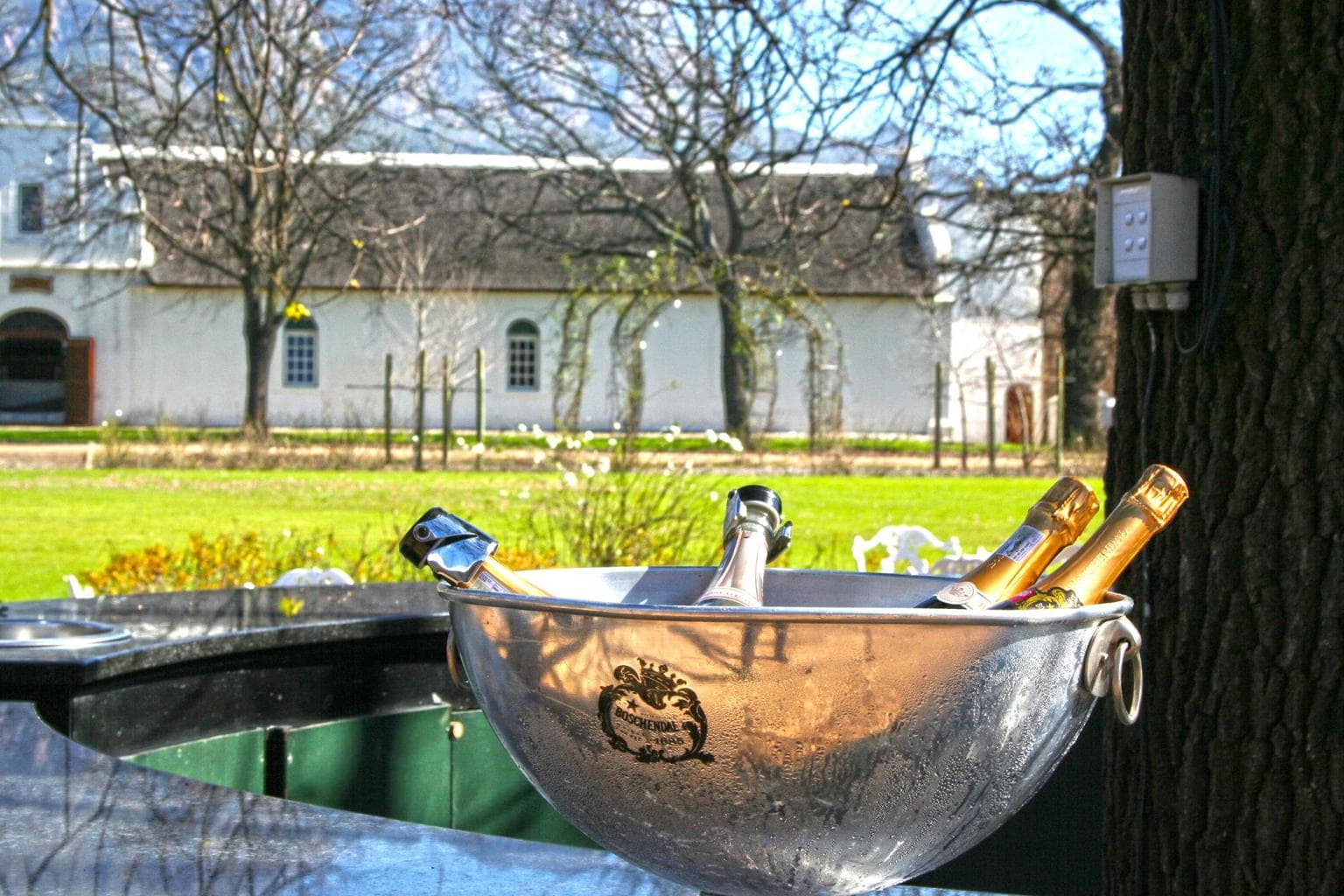 Bubbly at Boschendal