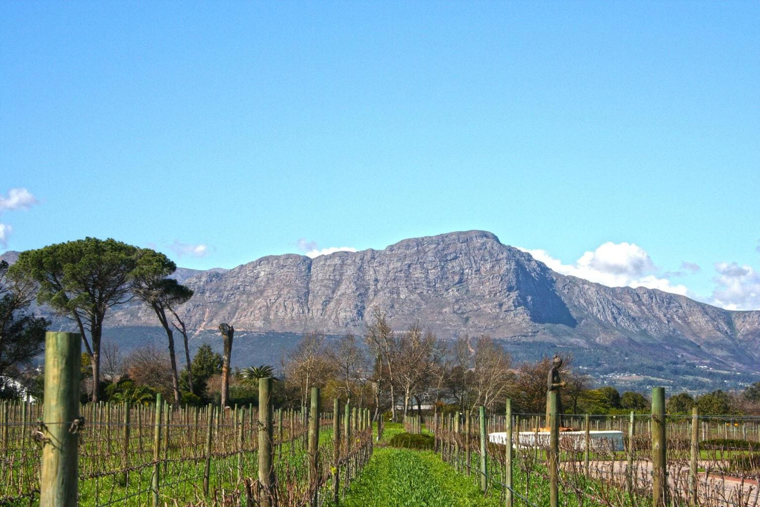 Franschhoek is one of the wards in South Africa