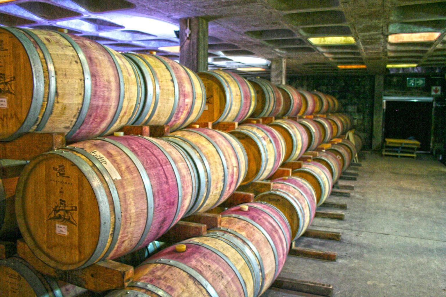 Kanonkop cellar