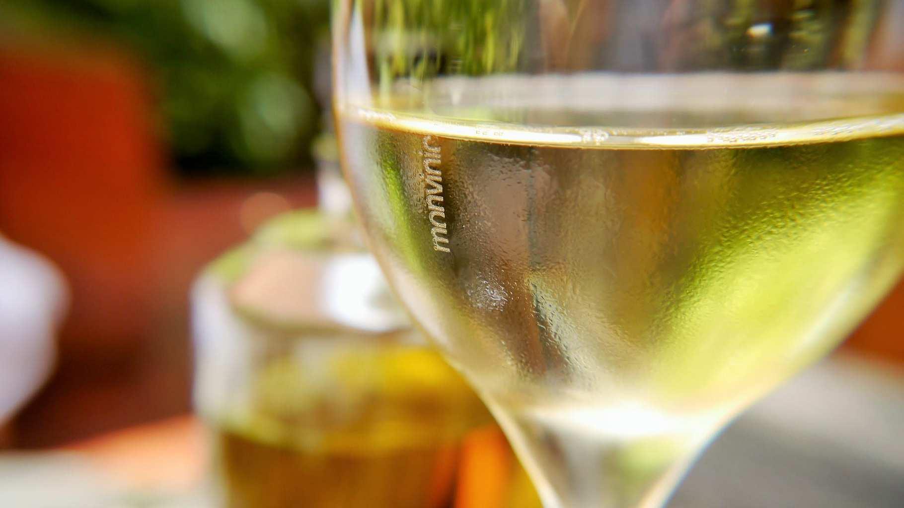 Monvinic wines