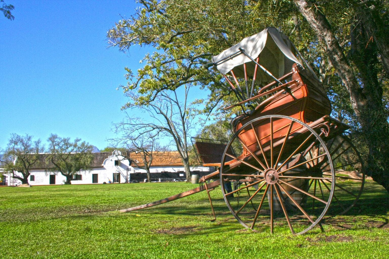 Old cart at the Spier grounds