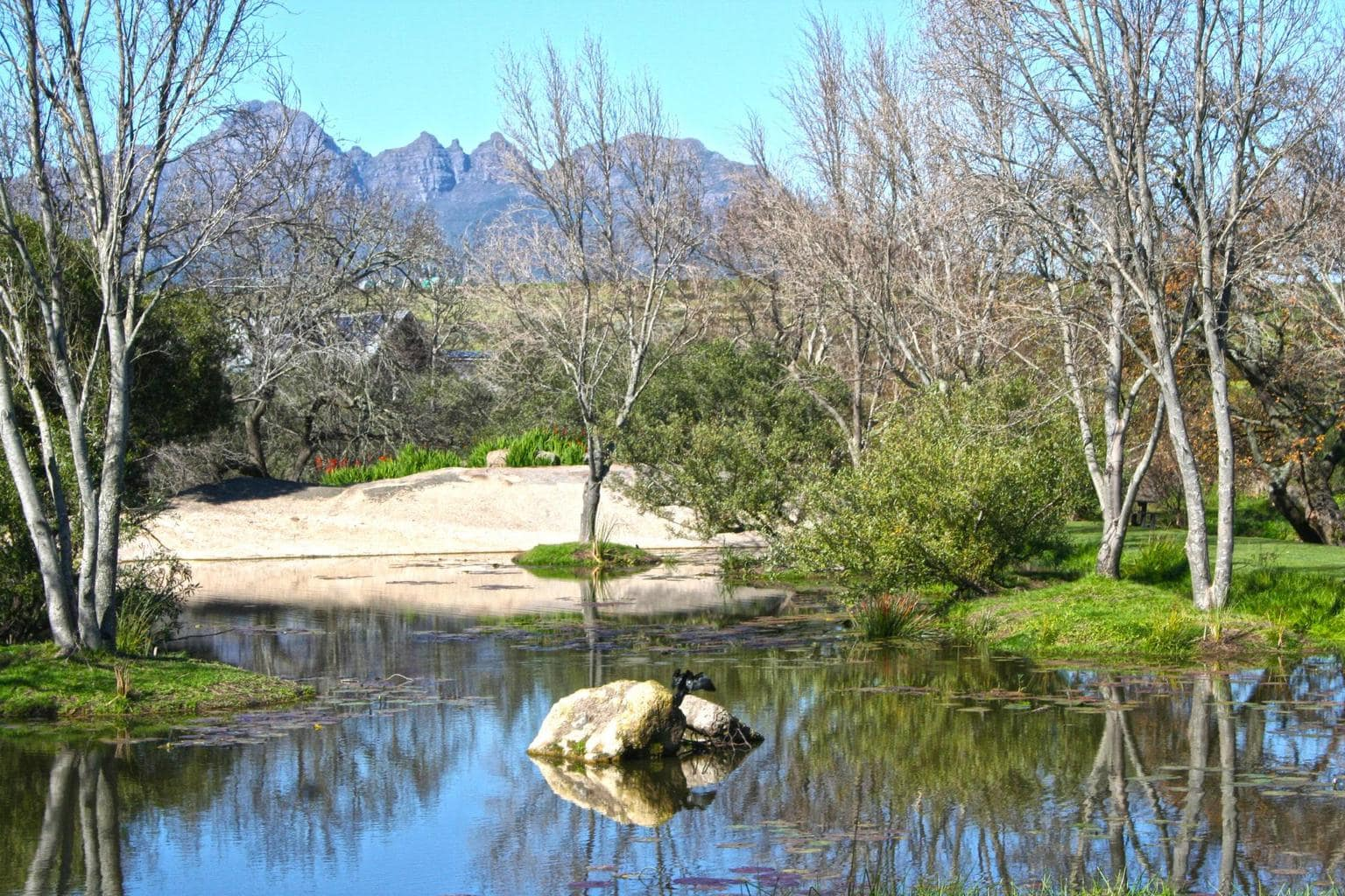 Pond on the Spier grounds