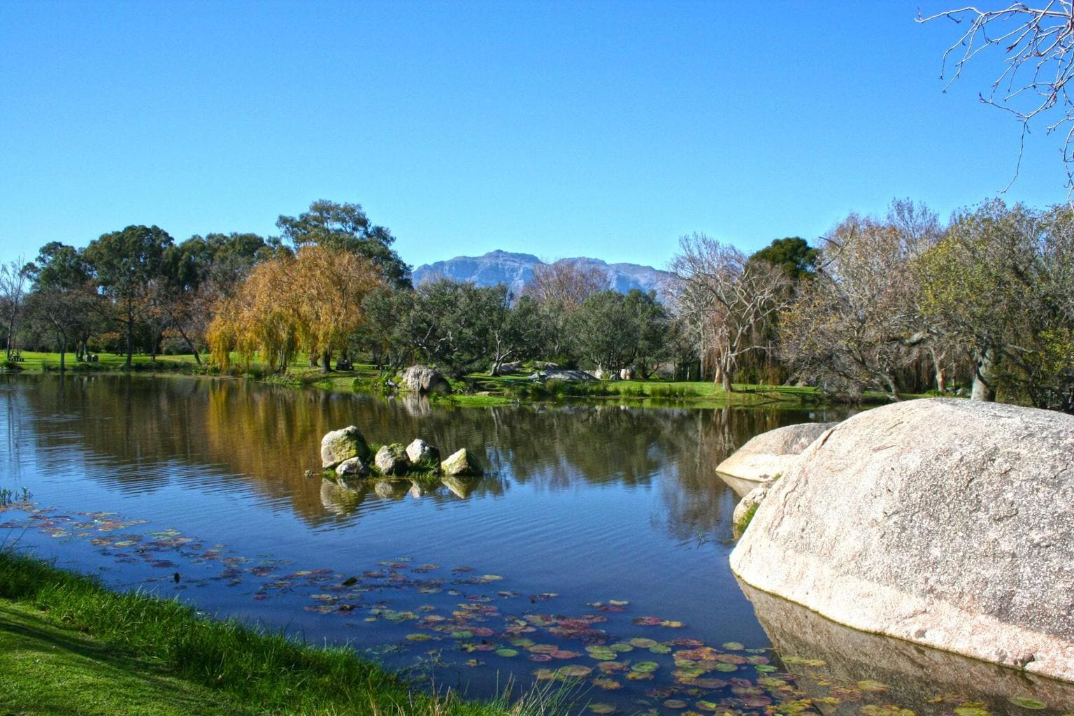 Pond views and sculptures at Spier