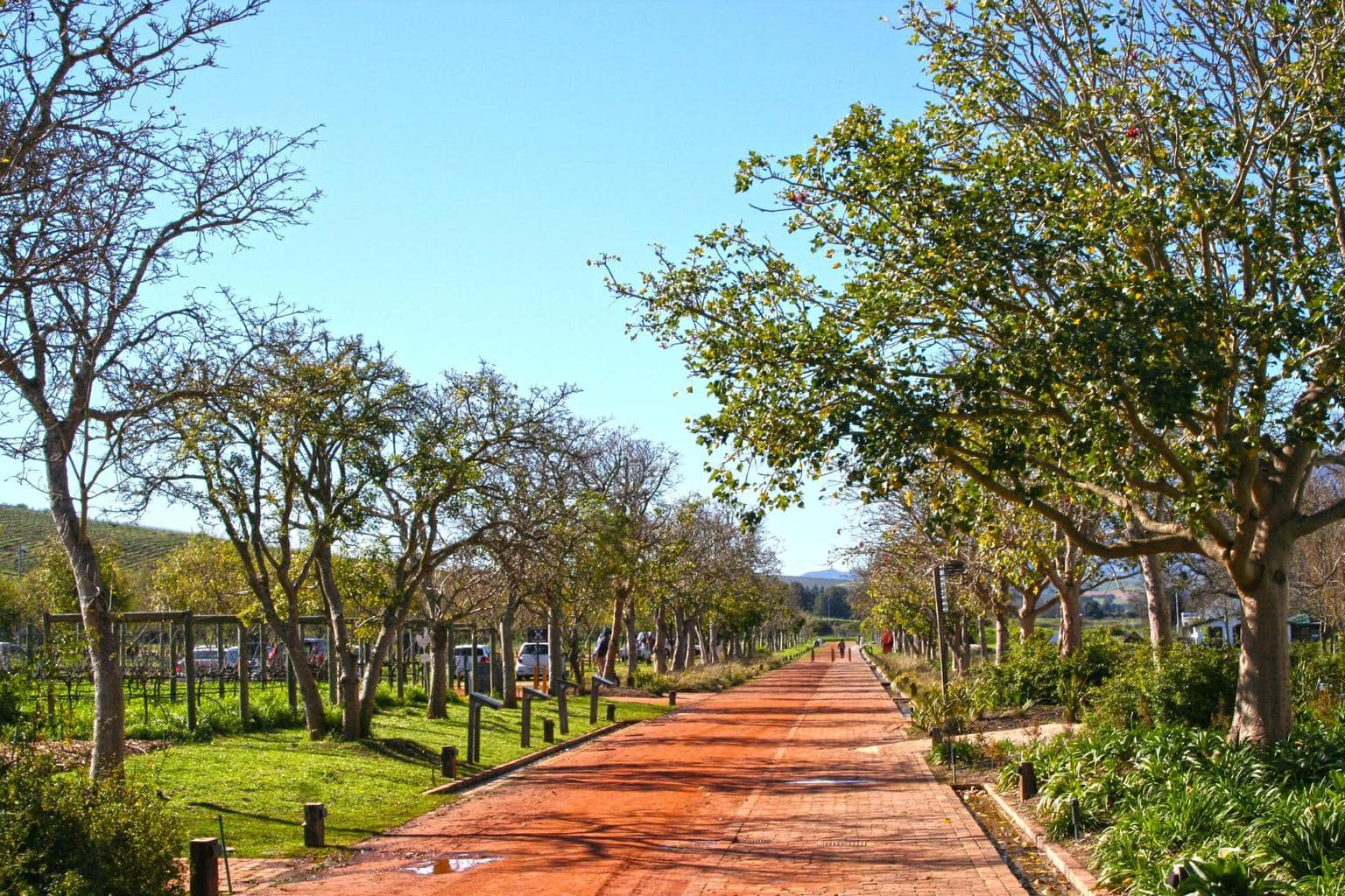 Spier path grounds