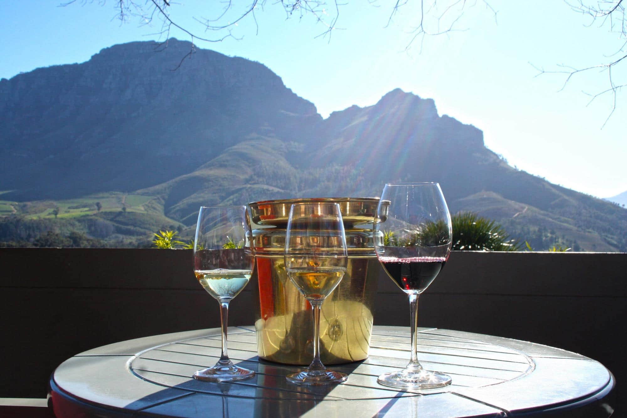 You can ship wine home at most wineries near Cape Town