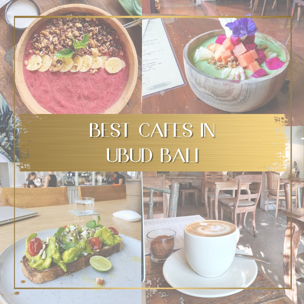 Best cafes in Ubud feature