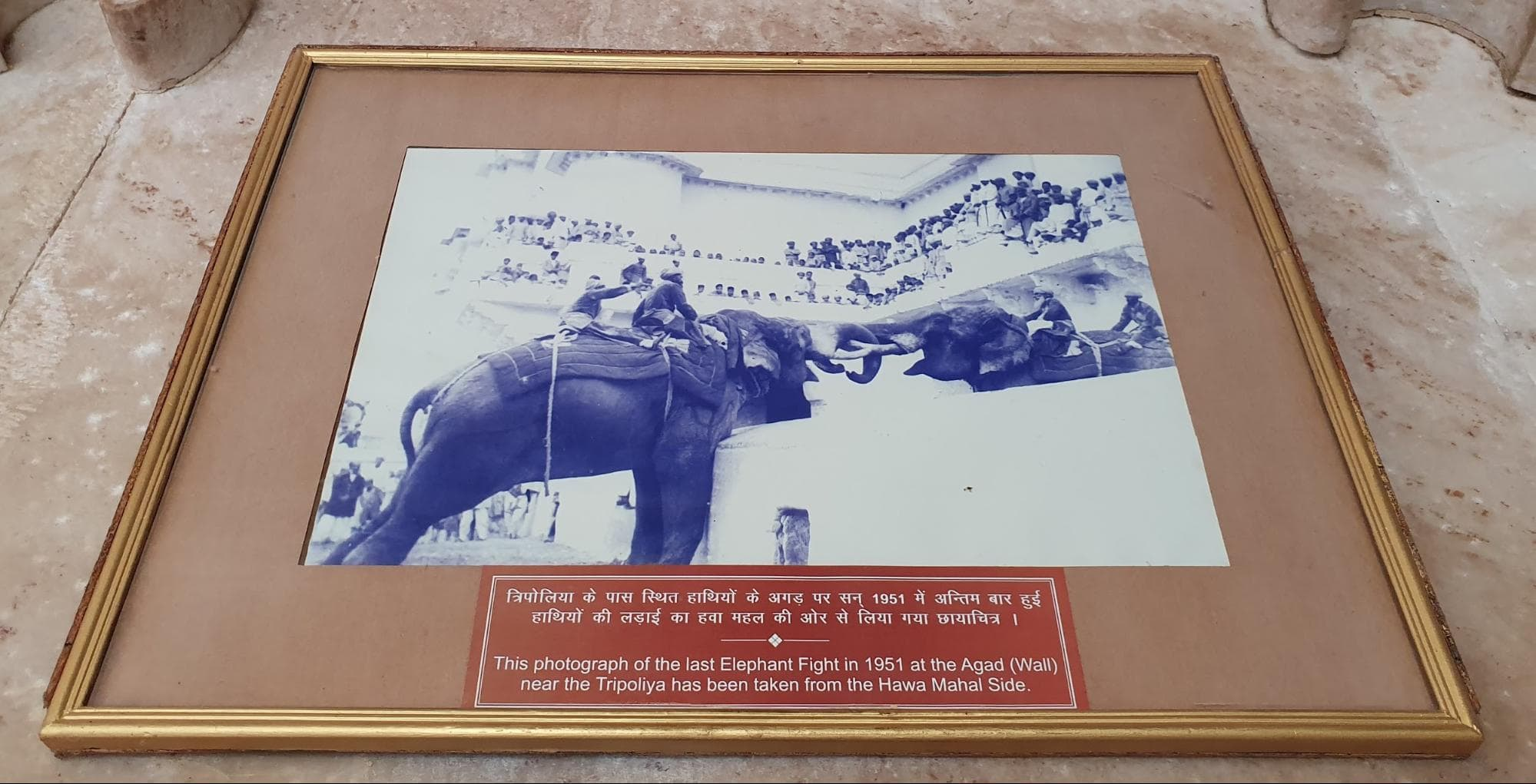 Photograph showing how elephant fights used to take place at Menak Chowk