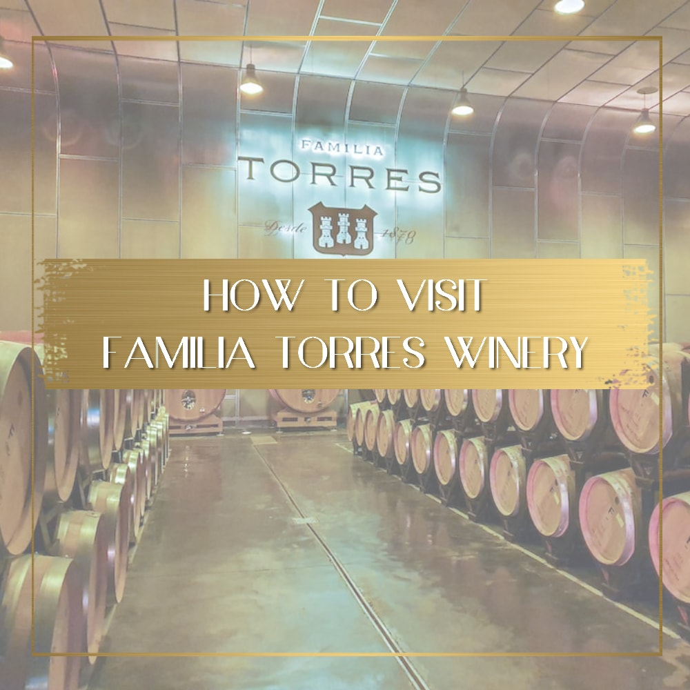 Familia Torres Winery feature