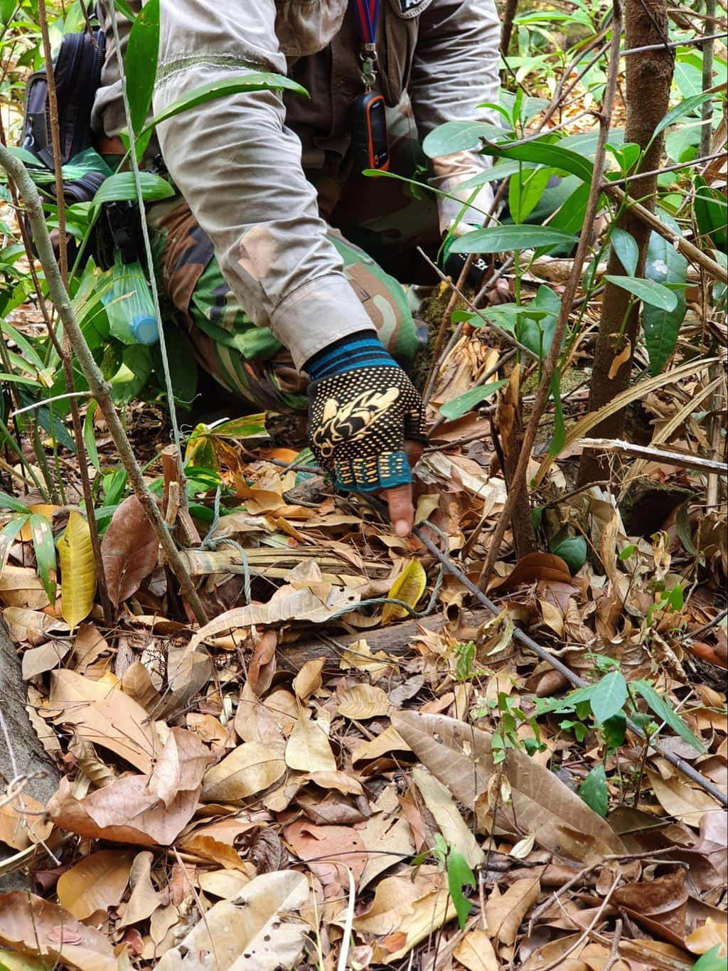 Dismantling traps with the Wildlife Alliance