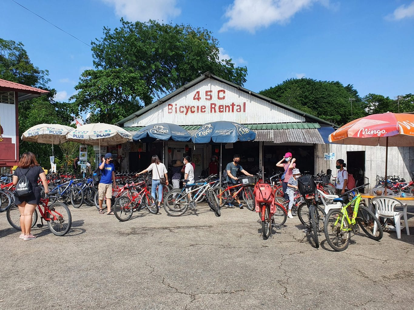 Bike rental store in Pulau Ubin