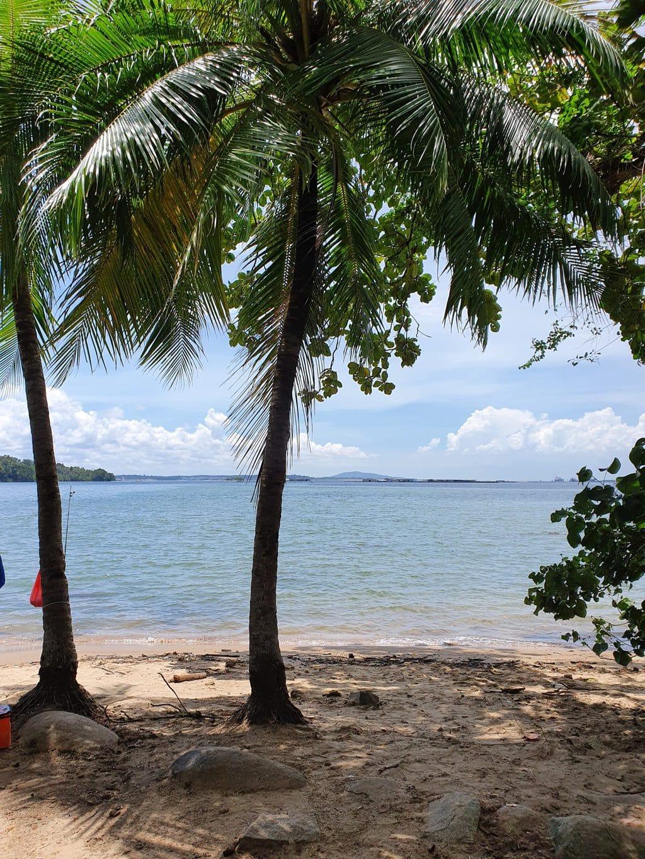 Sungei Ubin beach on Pulau Ubin