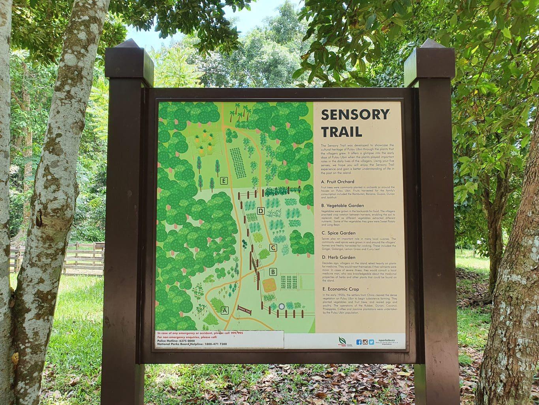 Pulau Ubin Sensory Trail Map