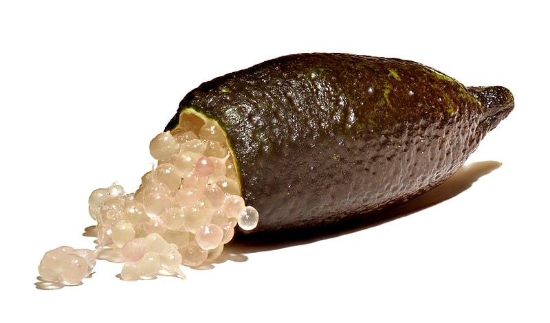 Australian finger lime. Wikipedia Amada44 (CC BY-SA 3.0)