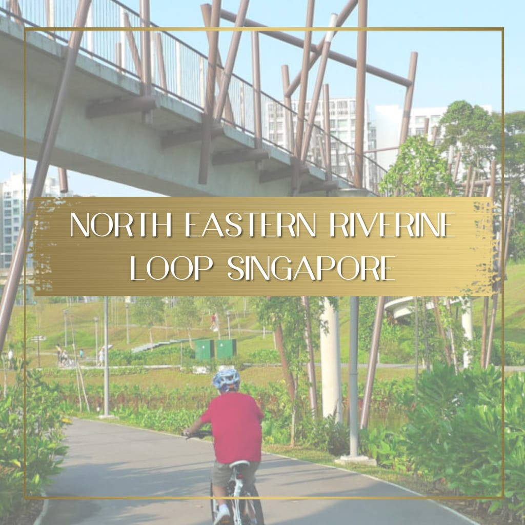 North Eastern Riverine Loop Singapore feature