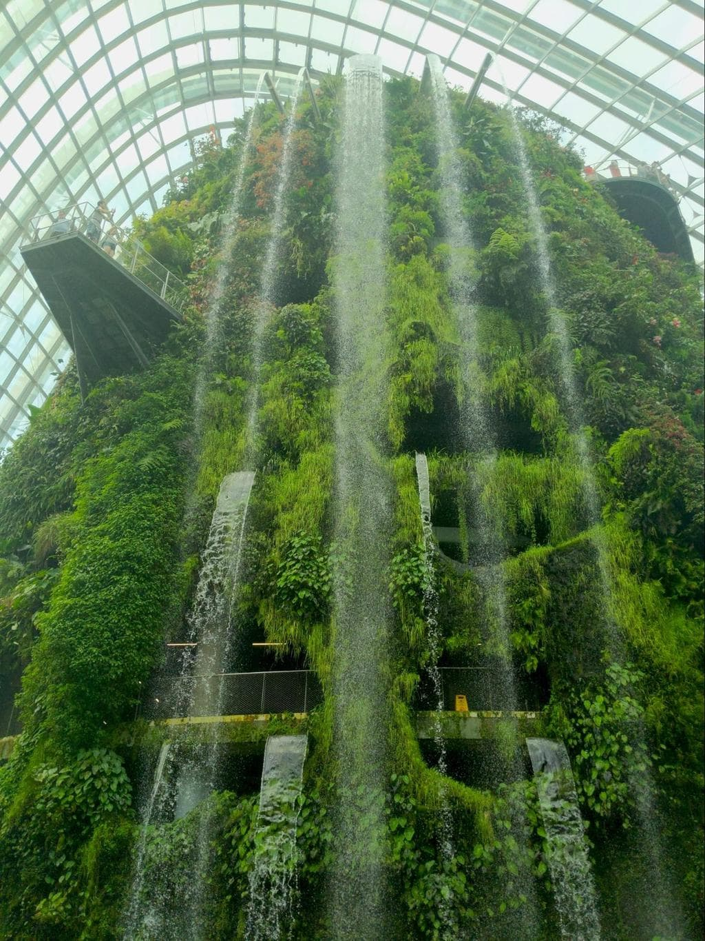 Cloud Forest waterfall at GBS