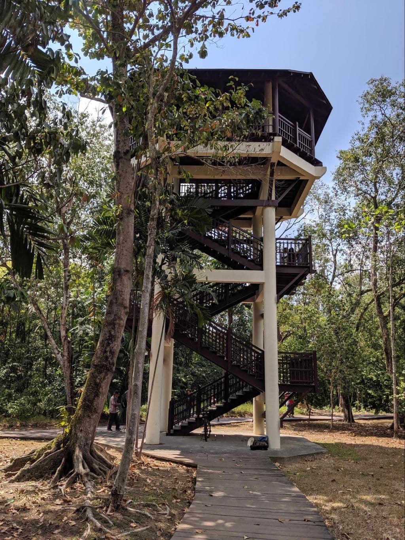 Pasir Ris Park tower