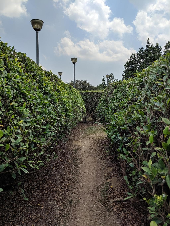 Pasir Ris Park walk