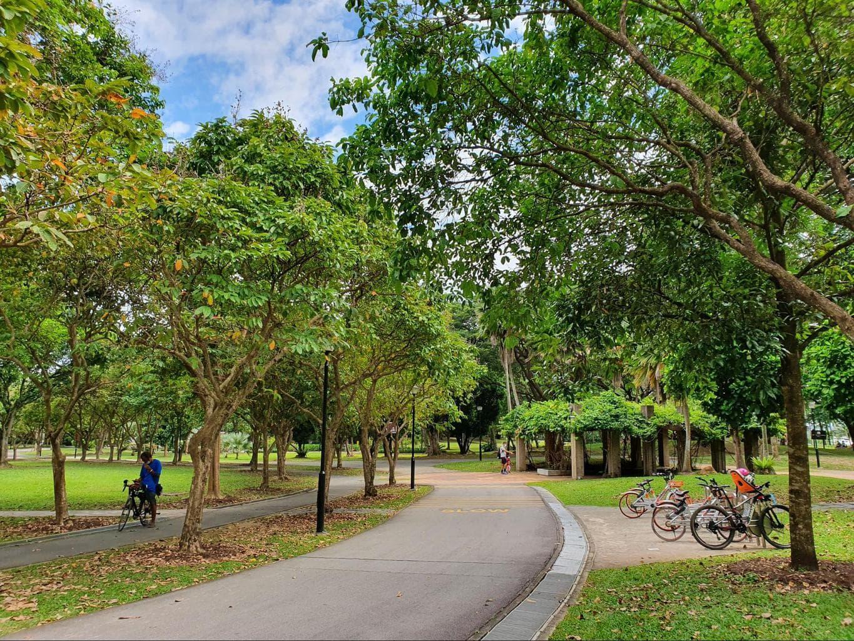 Riding a bike at West Coast Park