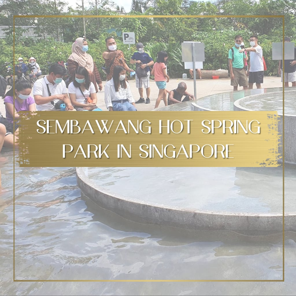 All natural Sembawang Hot Spring Park in Singapore