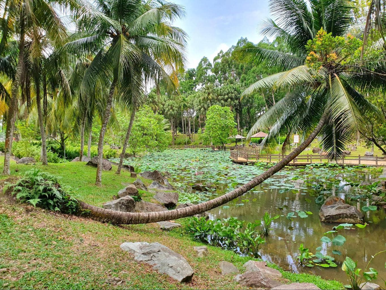 Bishan Ang Mo Kio Park