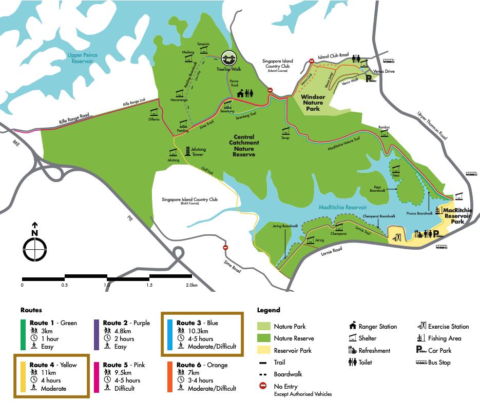 MacRitchie Lornie Trail map