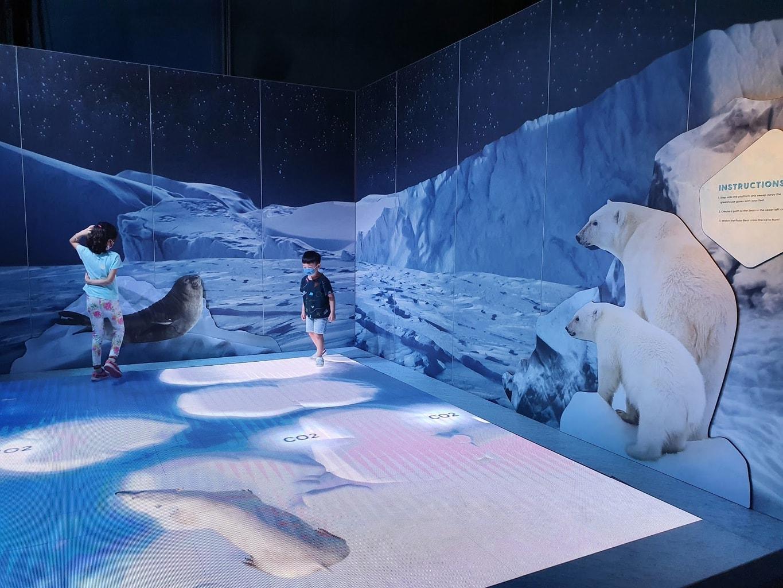 Animal Planet exhibition