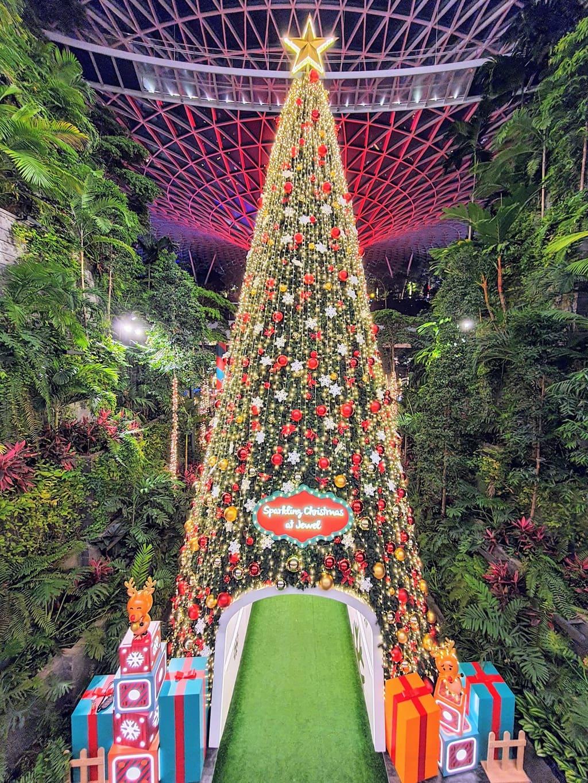 Sparkling Christmas at Jewel