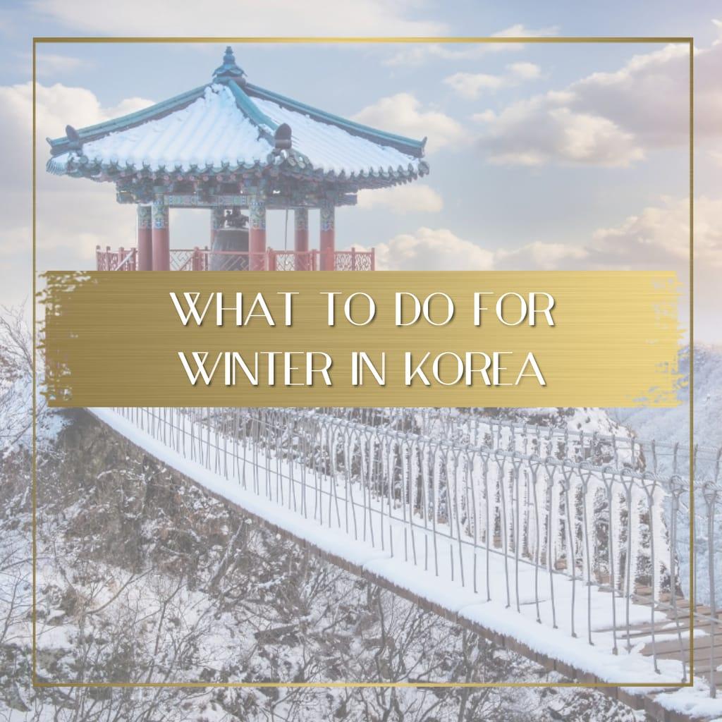 Winter in Korea feature