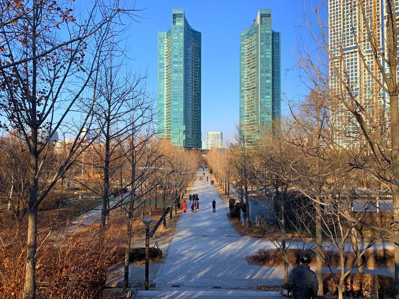 Seoul Forest in winter