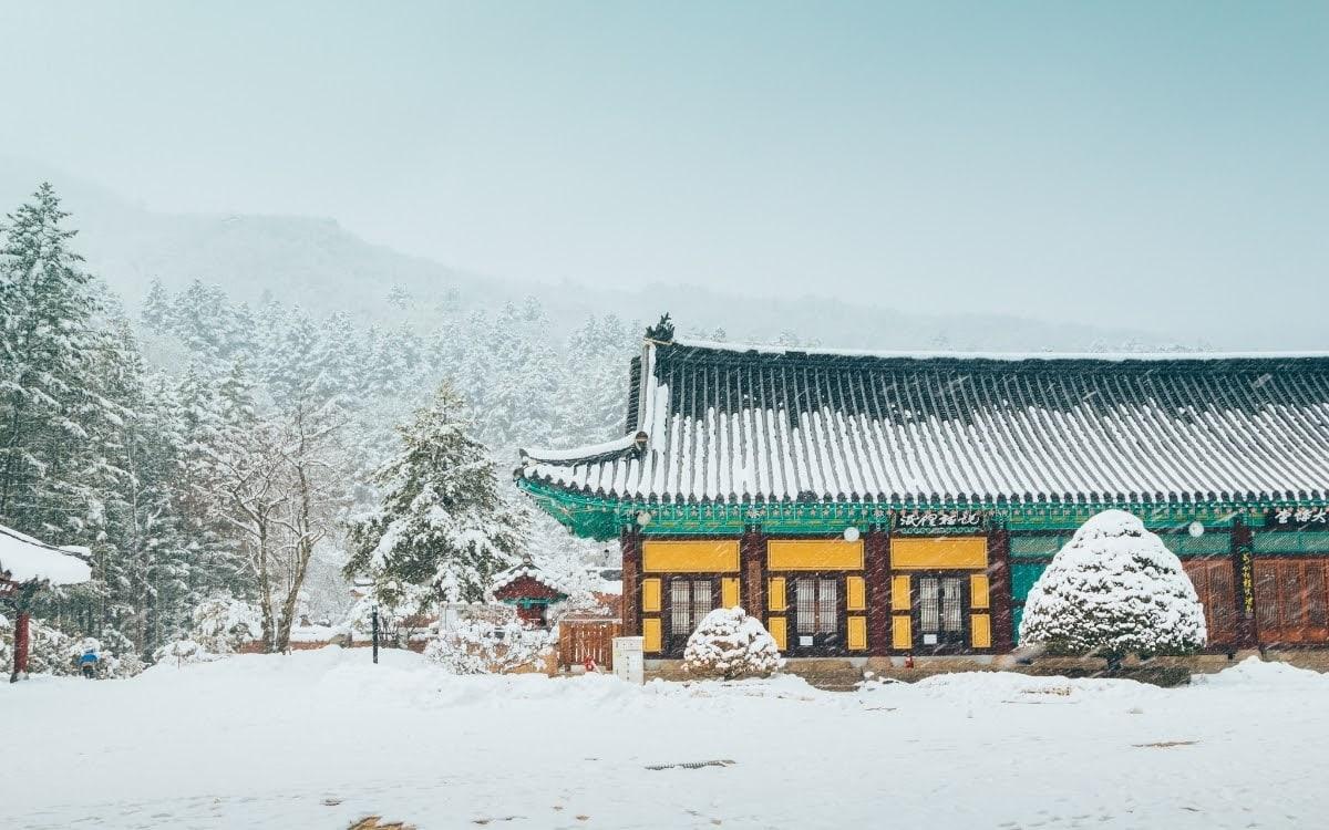 Pyeongchang winter scene