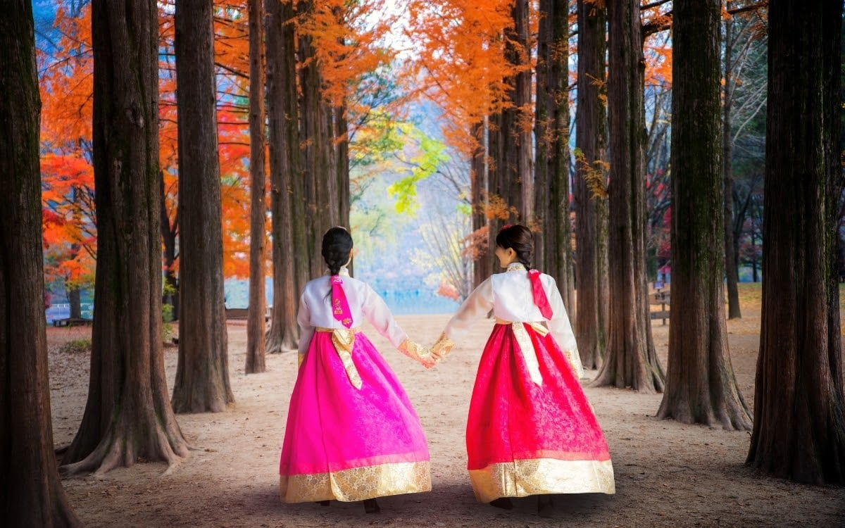 The most photographed site in Nami Island