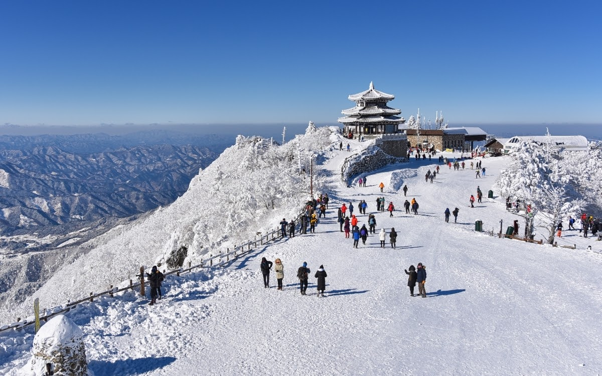 There is so much to do during winter in Korea