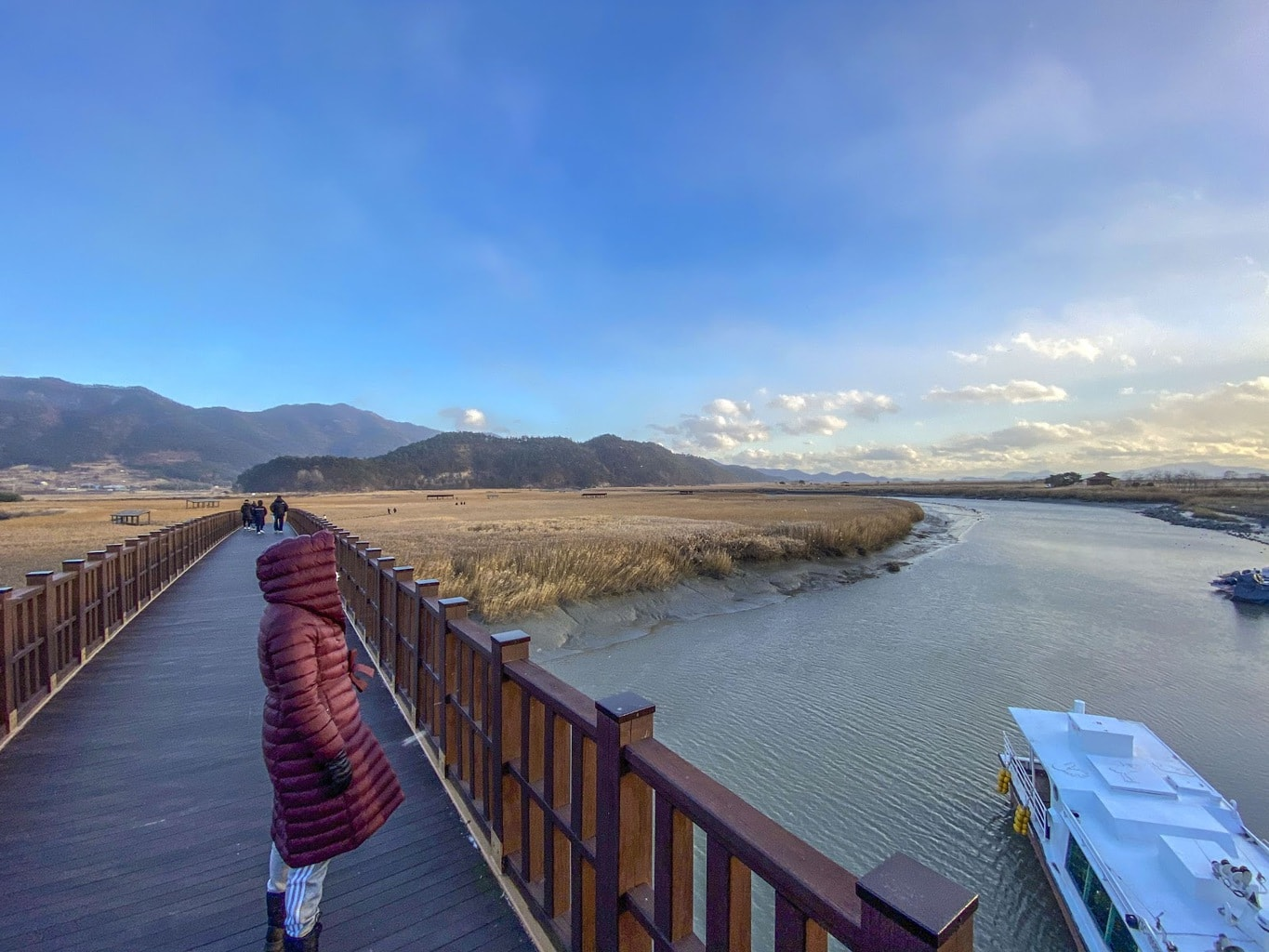 Suncheon Bay Biosphere Reserve in winter