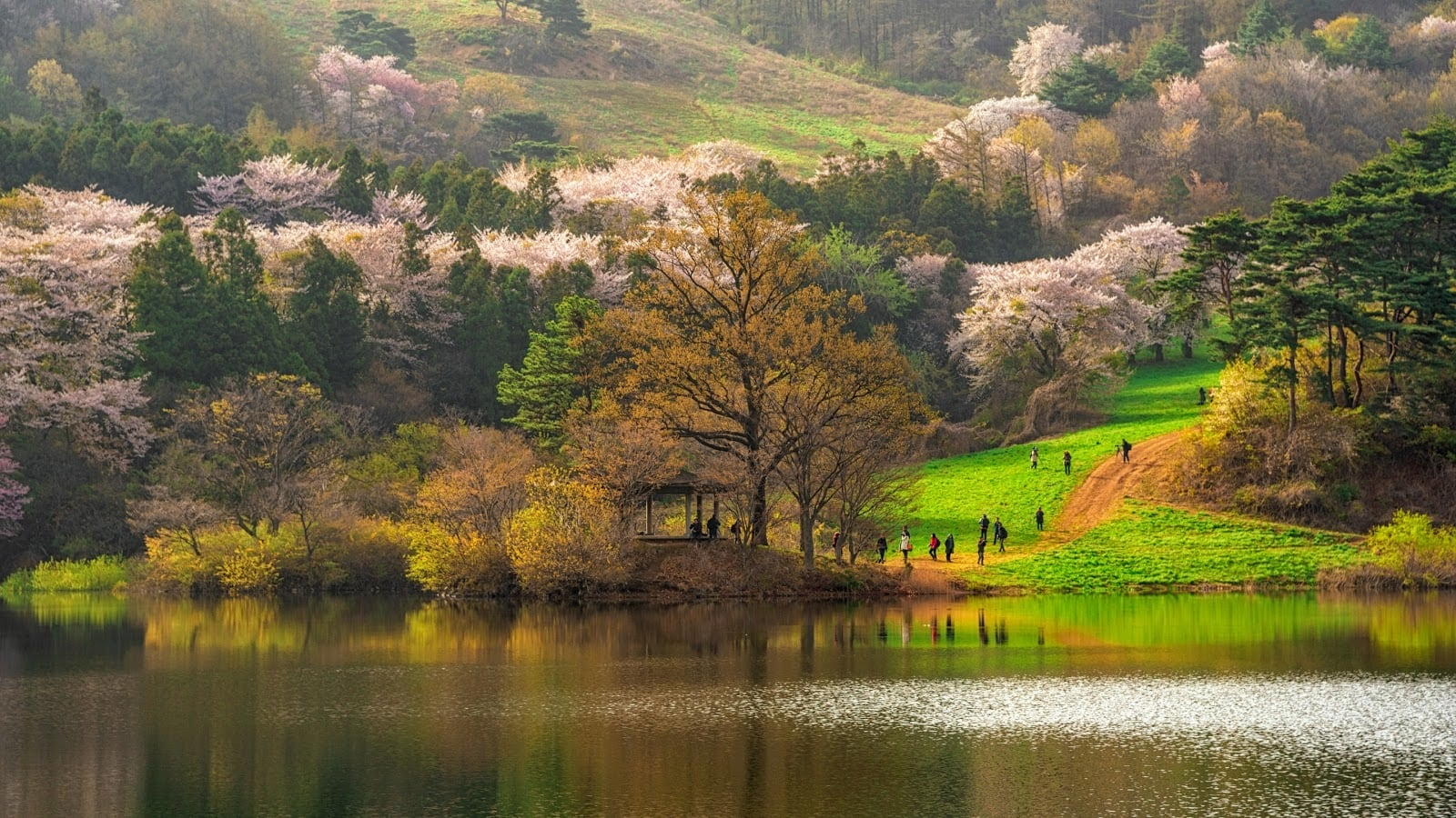 Spring and Fall are the best times to visit South Korea