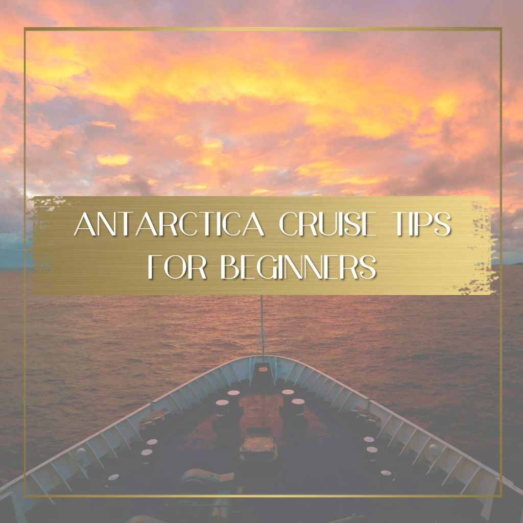 Antarctica Cruise Tips for beginners feature